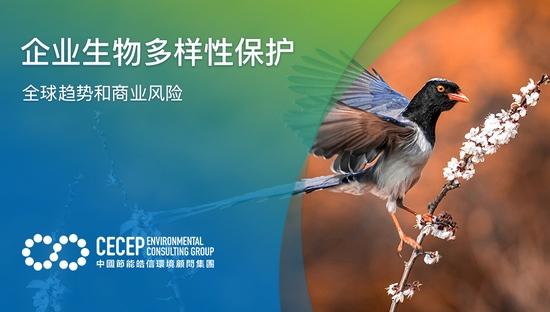 【企业生物多样性保护】全球趋势和商业风险